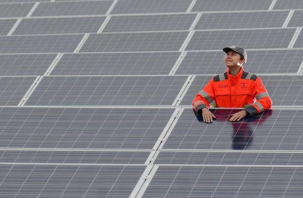 Worker standing among solar panels on a solar farm.